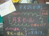 2011/8/25立石