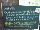 051109松江