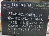 091110松江