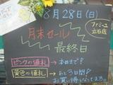 2011/08/28立石