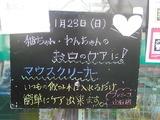 2011/1/23立石
