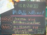 2011/10/9立石