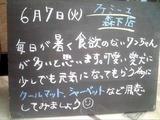 2011/6/7森下