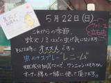 2011/05/22立石
