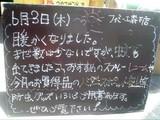 2010/6/3森下