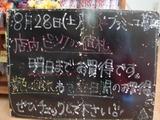 2010/8/28葛西