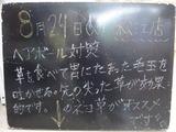 2010/8/24松江