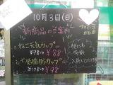 2010/10/3立石