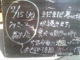 2011/02/15森下