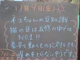 2012/11/9立石