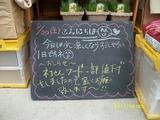 2011/08/20森下
