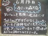 2011/6/14森下