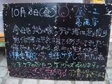 2010/10/08葛西