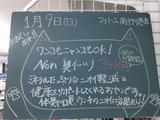 2011/1/9南行徳
