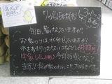 2010/7/15立石