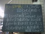 090327南行徳