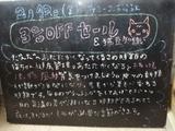 090213松江