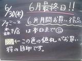 2011/6/30森下