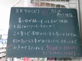2011/8/9南行徳