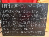 2011/1/9葛西