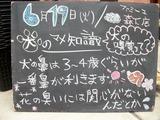 2012/6/19森下