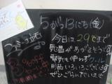 2011/5/13立石