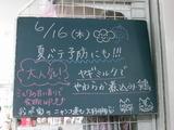 2011/6/16南行徳