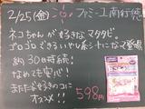 2011/02/25南行徳