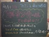 2010/4/11南行徳