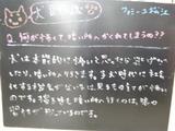 080701松江
