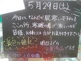 2010/05/29立石