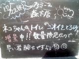 2010/12/22森下