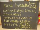 2011/5/6松江