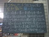 2010/07/30南行徳