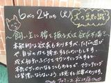 080624松江