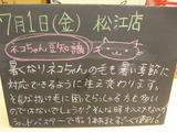 2011/7/1松江