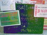 2011/03/11立石