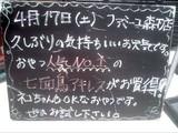 2010/04/17森下