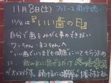 081109南行徳