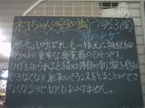 091023南行徳