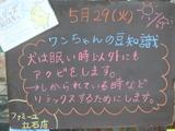 2012/5/29立石
