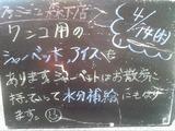 2011/4/14森下