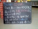 2011/7/15森下