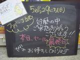 2011/5/29立石
