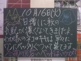 071016南行徳