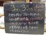 2011/3/30松江