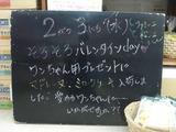 2011/2/3松江