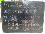 2010/10/08松江