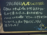 060206松江