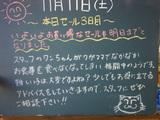 051112南葛西
